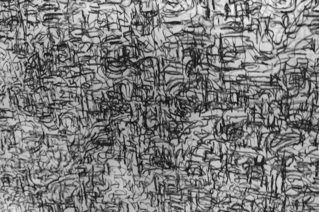 Shroud     (detail)