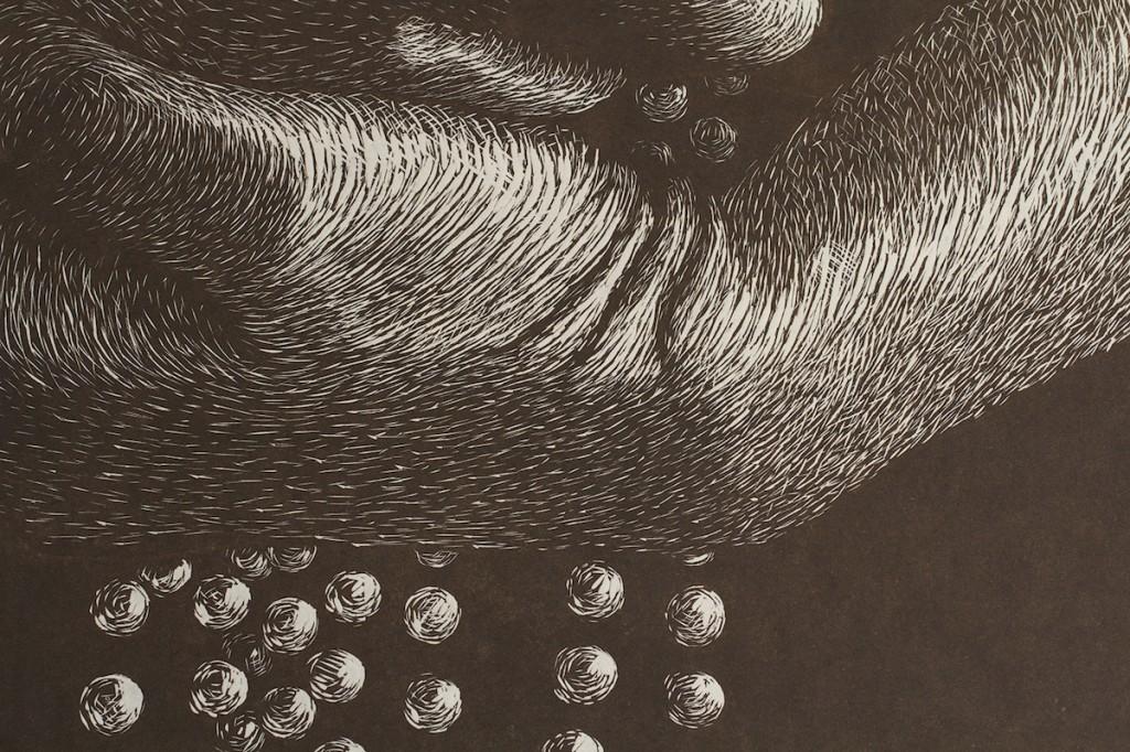 CASCADE I: CIRRUS (Detail)  Laura Widmer