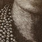 CASCADE II: LACUNOSUS (Detail)  Laura Widmer